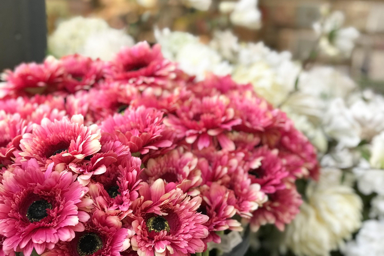 Home & Garden flowers