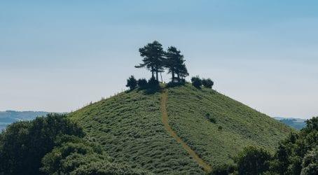 Dorset walks up colmers hill